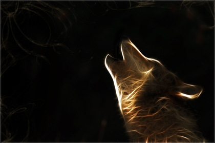 fractal wolf wallpaper by pimart 2550x1699 wallpaper_www.artwallpaperhi.com_68