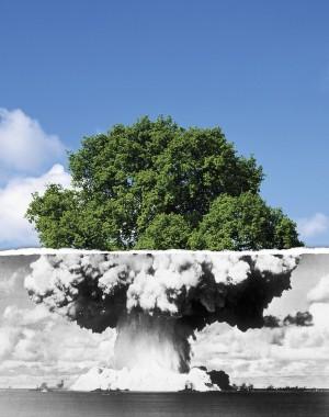 war-peace-tree1