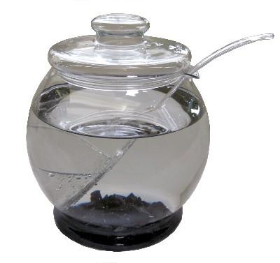 shungite water