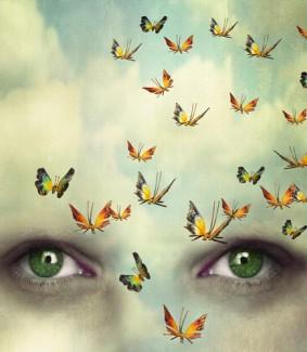 butterfliescrpd-e1438191190670