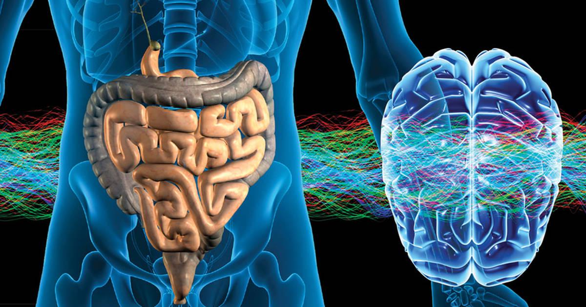 2015-09-24-healthy-gut-healthy-brain-fb